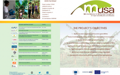 Folleto informativo Proyecto MUSA