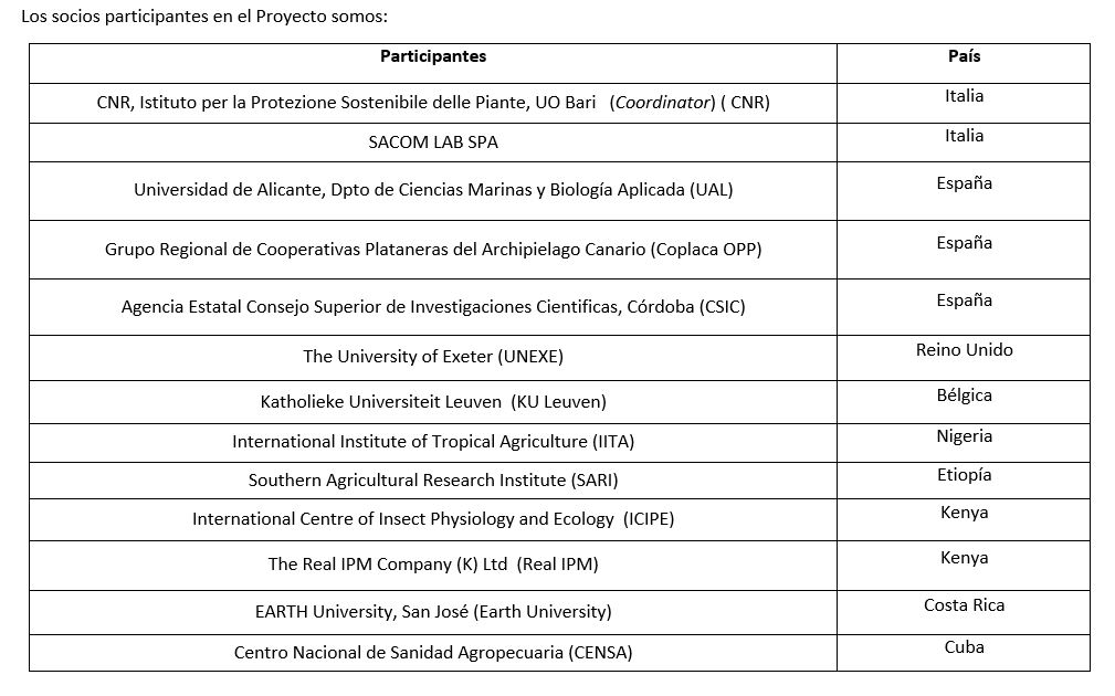 Información sobre el Proyecto MUSA