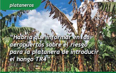 Artículo en «Campo Canario» sobre Fusarium TR4