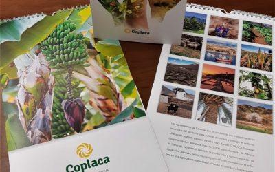 Agenda 2021 de COPLACA